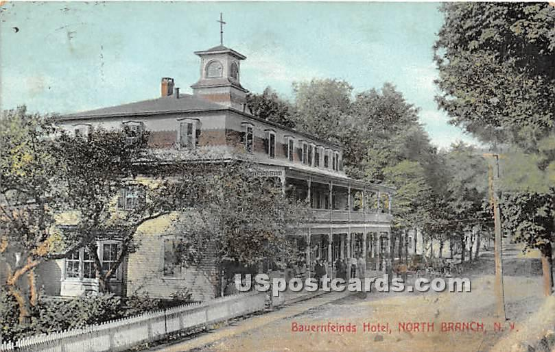 Bauernfeinds Hotel - North Branch, New York NY Postcard