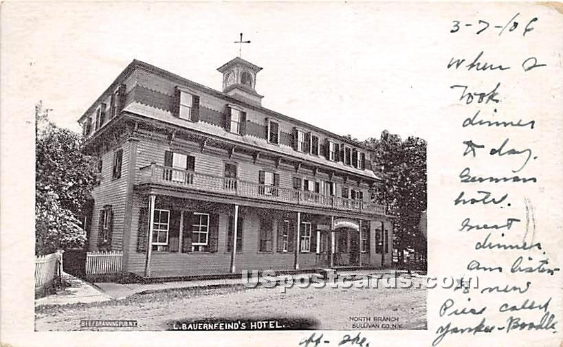 L Bauernfeind's Hotel - North Branch, New York NY Postcard