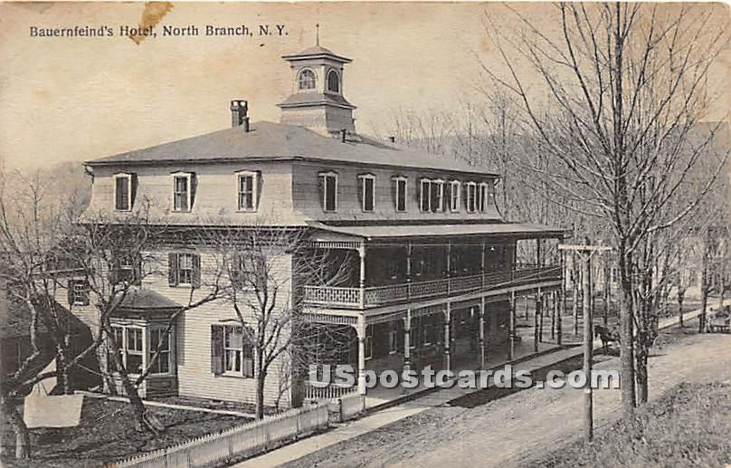 Bauernfeind's Hotel - North Branch, New York NY Postcard
