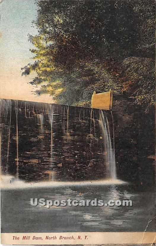 The Mill Dam - North Branch, New York NY Postcard