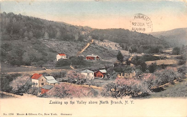 Looking up the Valley North Branch, New York Postcard