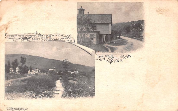 The Old Mill North Branch, New York Postcard