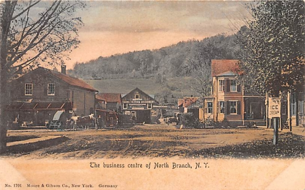 Business Centre North Branch, New York Postcard