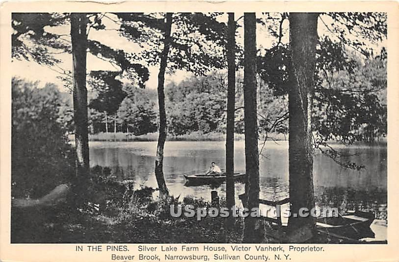In the Pines - Narrowsburg, New York NY Postcard