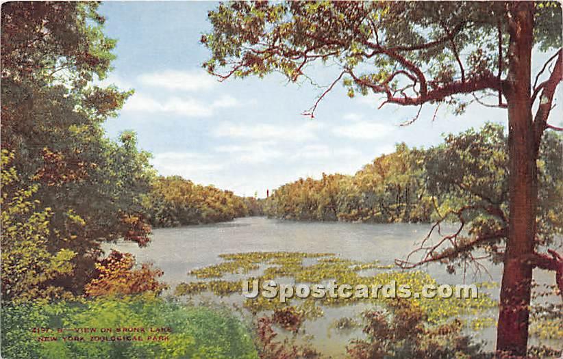 Bronx Lake - New York Zoological Park Postcards, New York NY Postcard