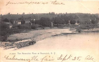 The Neversink River New York Postcard