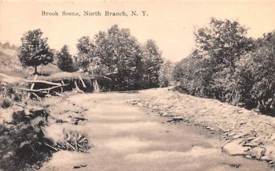 Brook Scene North Branch, New York Postcard