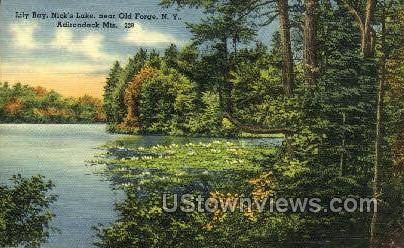 Lily Bay, Nick's Lake - Old Forge, New York NY Postcard
