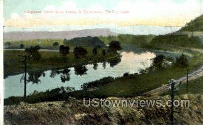 Allegheny River - Olean, New York NY Postcard
