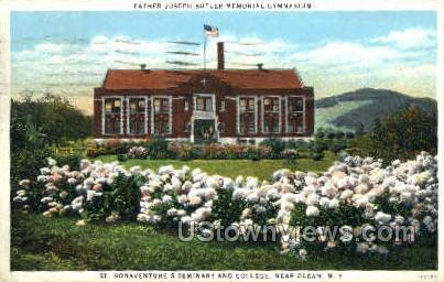 St. Bonaventure's Seminary - Olean, New York NY Postcard