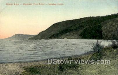 Chestnut Tree Point - Otsego Lake, New York NY Postcard