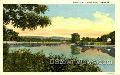 Susquehanna River - Owego, New York NY Postcard