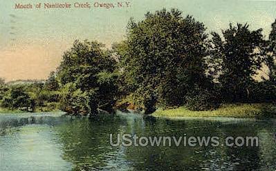 Mouth of Nanticoke Creek - Owego, New York NY Postcard