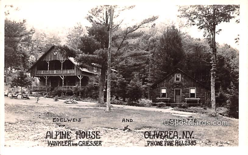 Alpine House - Oliverea, New York NY Postcard