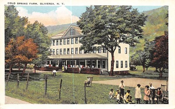 Cold Spring Farm Oliverea, New York Postcard