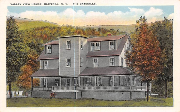 Valley View House Oliverea, New York Postcard