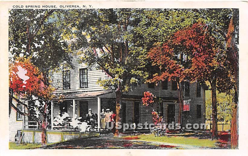 Cold Spring House - Oliverea, New York NY Postcard