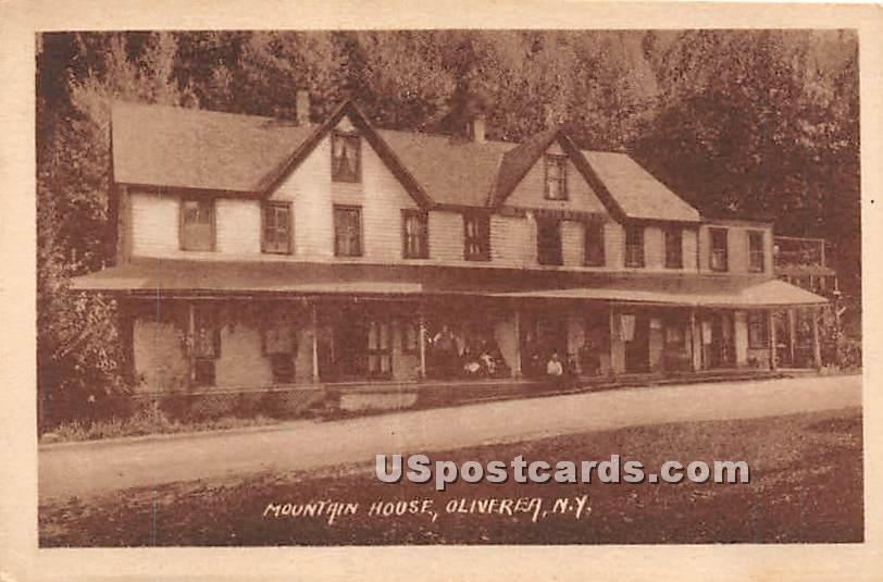 Mountain Hosue - Oliverea, New York NY Postcard