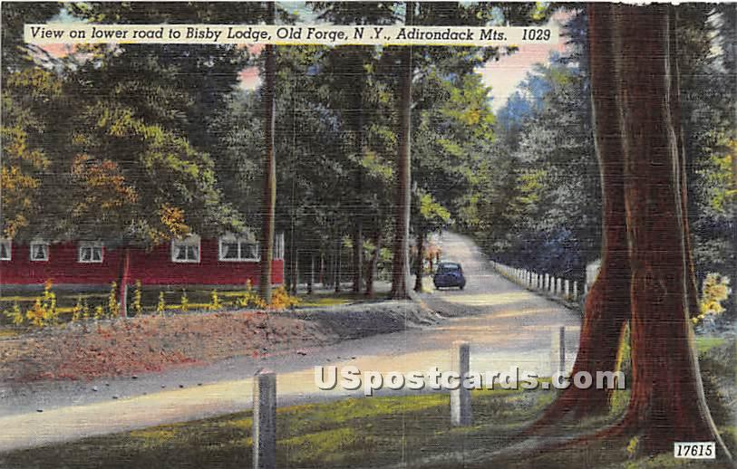 Bisby Lodge - Old Forge, New York NY Postcard
