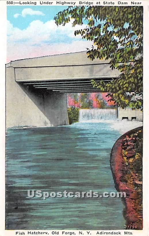 Under Highway Bridge, Dam, Fish Hatchery - Old Forge, New York NY Postcard
