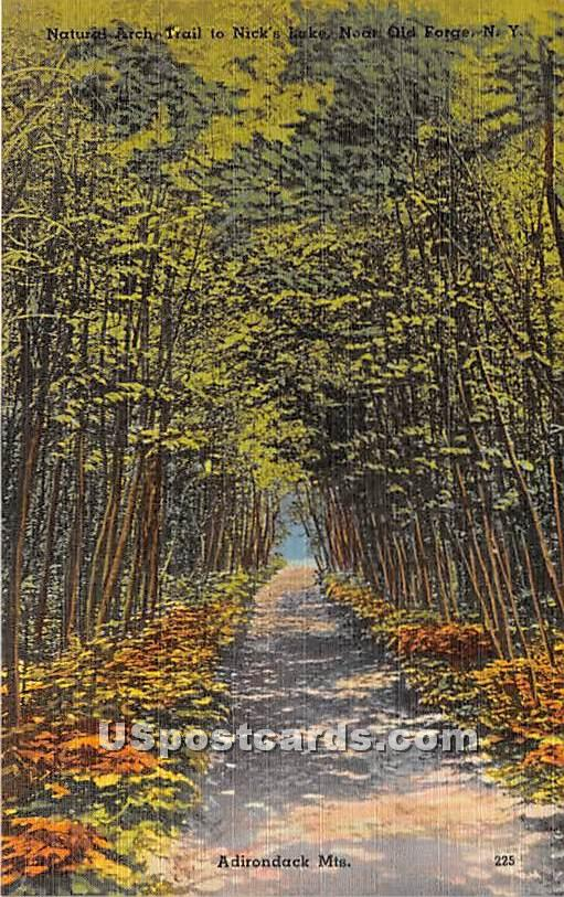 Natural Arch Trail - Old Forge, New York NY Postcard