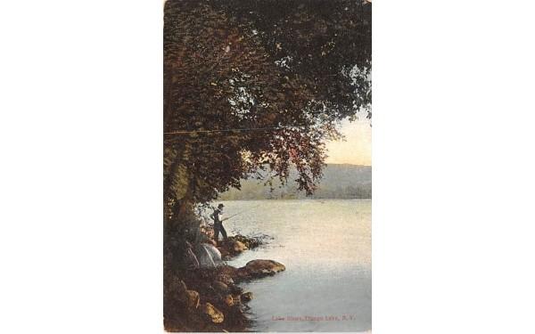 Lake Shore Otsego Lake, New York Postcard
