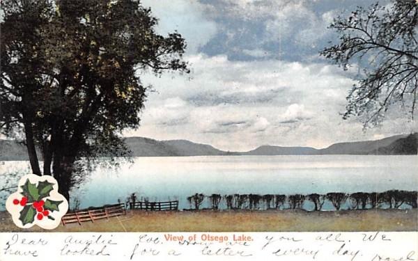 Water View Otsego Lake, New York Postcard