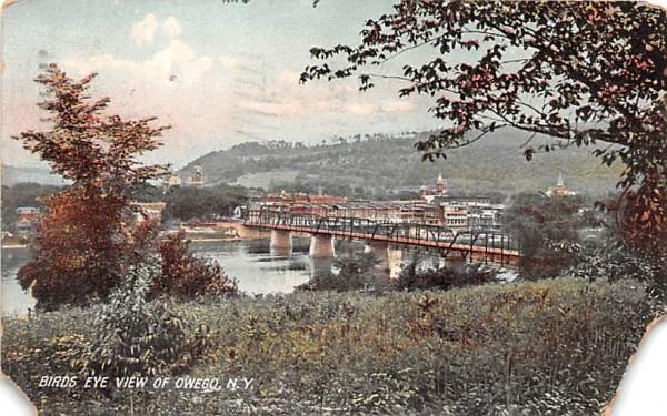 Bird's Eye View Owego, New York Postcard