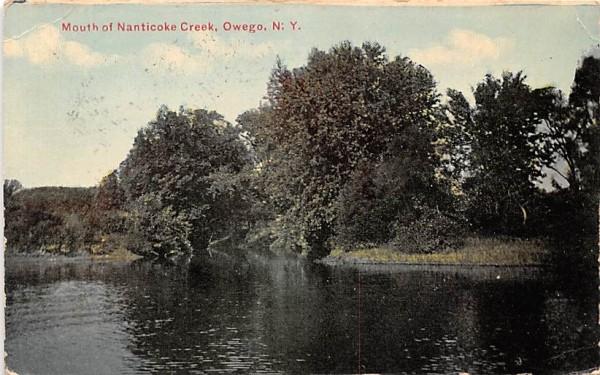 Mouth of Nanticoke Creek Owego, New York Postcard