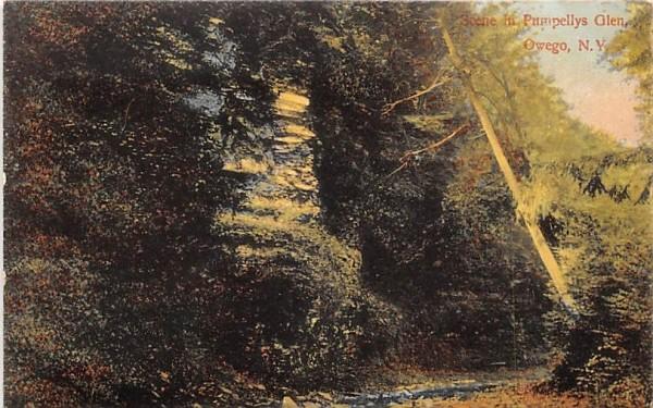 Pumpellys Glen Owego, New York Postcard