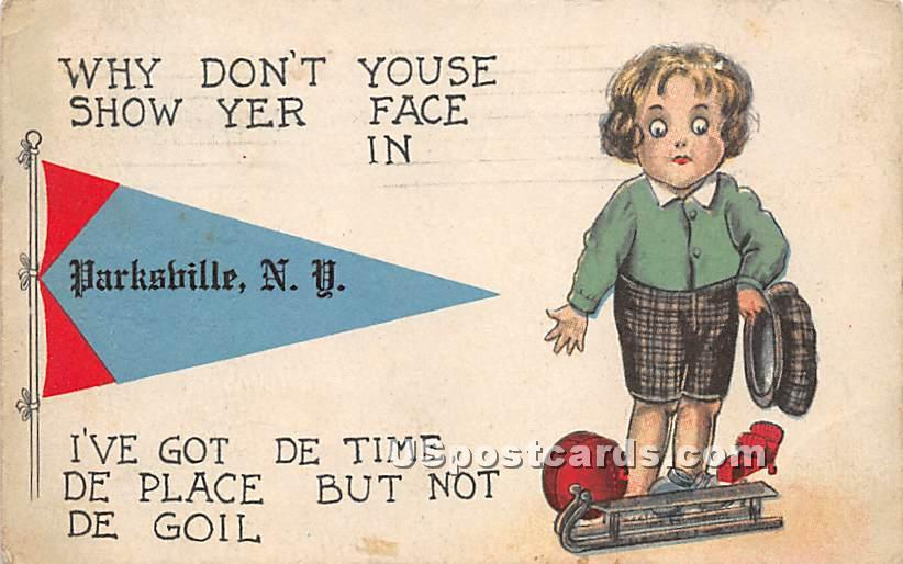 Why Don't Youse Show Yer Face - Parksville, New York NY Postcard