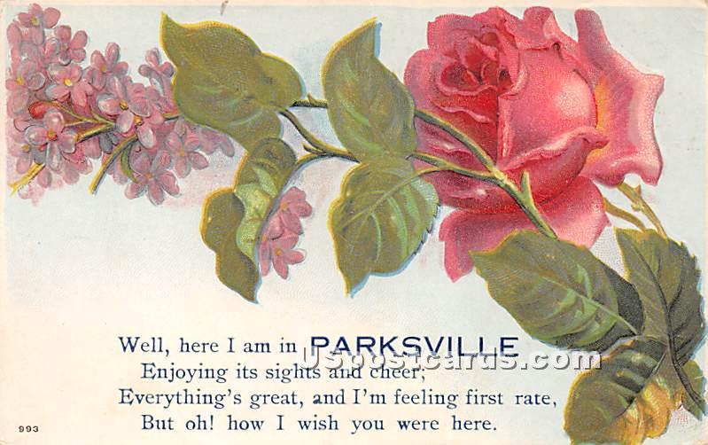 Flower - Parksville, New York NY Postcard