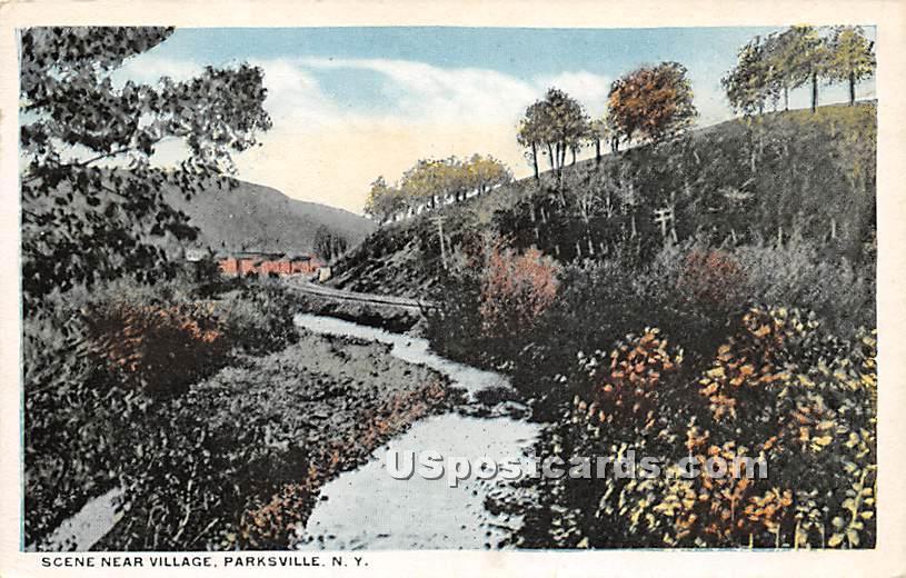 Scene near Village - Parksville, New York NY Postcard