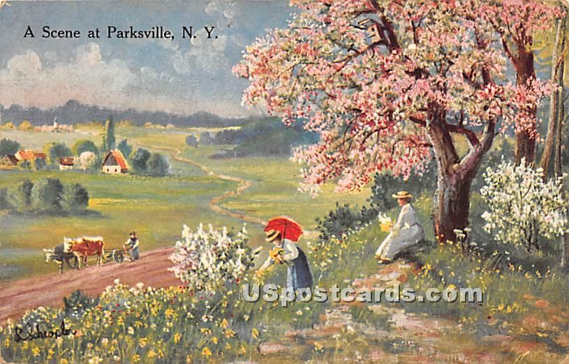 Scenery - Parksville, New York NY Postcard