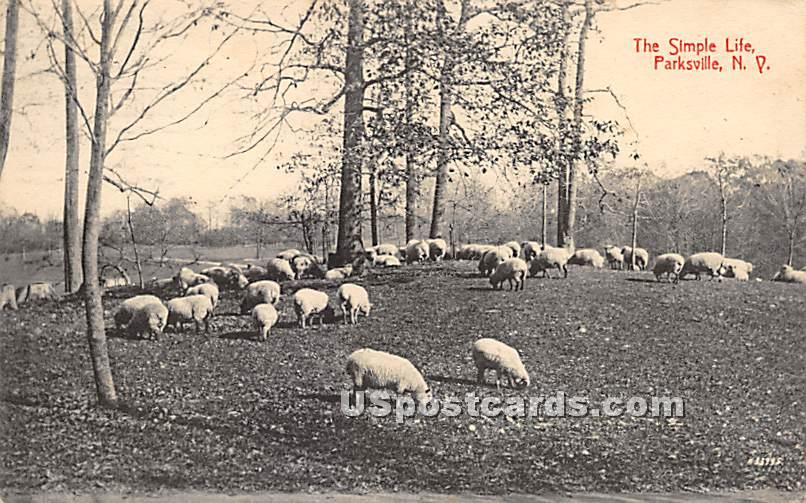 The Simple Life - Parksville, New York NY Postcard