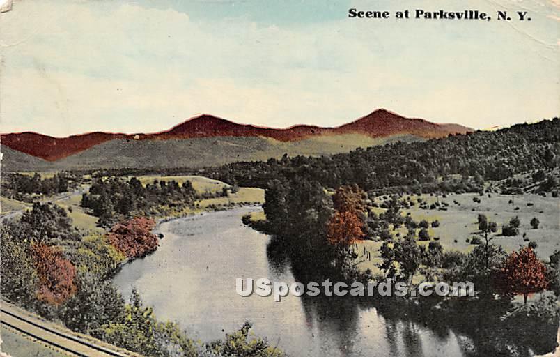 Birds Eye View - Parksville, New York NY Postcard