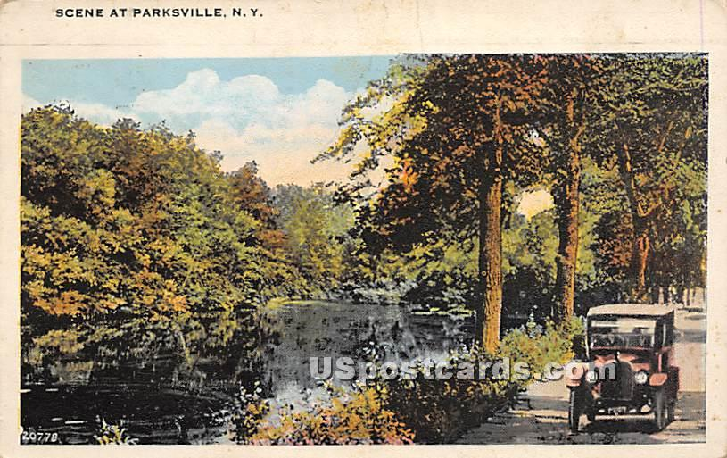 Water and Road Scene - Parksville, New York NY Postcard