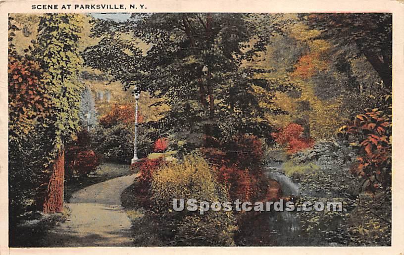 Road Scene - Parksville, New York NY Postcard