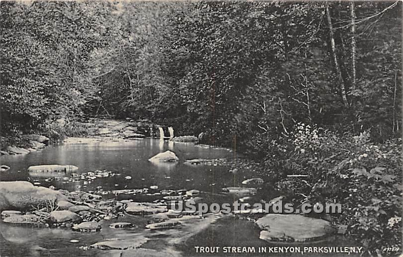 Trout Stream in Kenyon - Parksville, New York NY Postcard