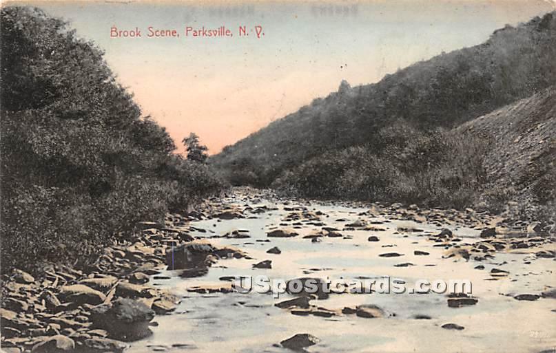 Brook Scene - Parksville, New York NY Postcard