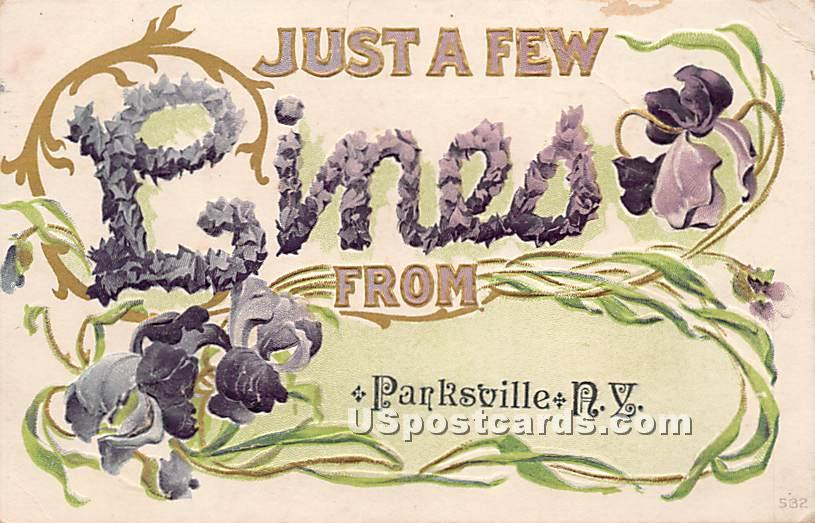 Just a few Lines - Parksville, New York NY Postcard