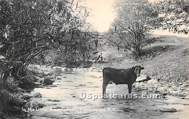 Little Beaverkill - Parksville, New York NY Postcard