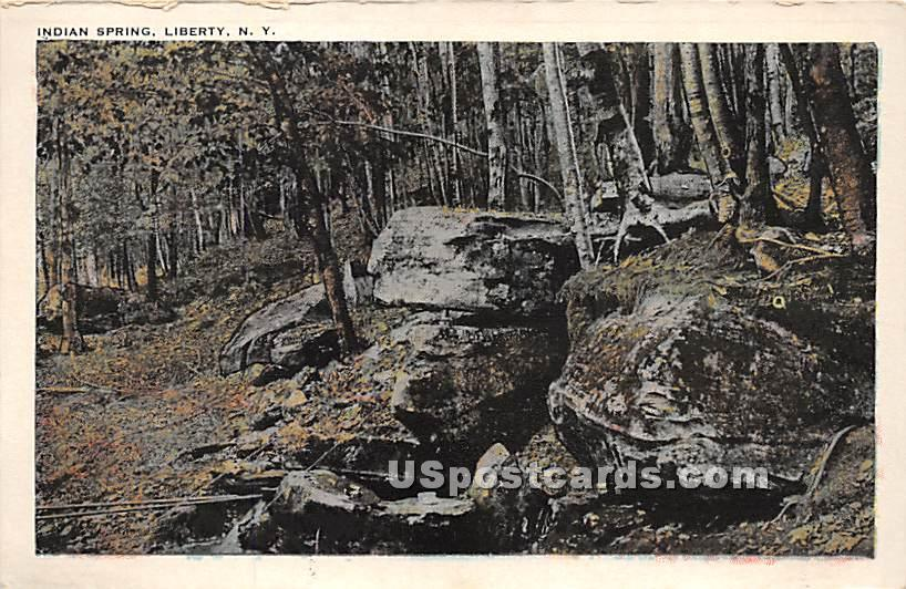 Indian Spring - Parksville, New York NY Postcard