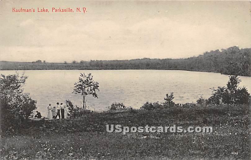Kaufman's Lake - Parksville, New York NY Postcard