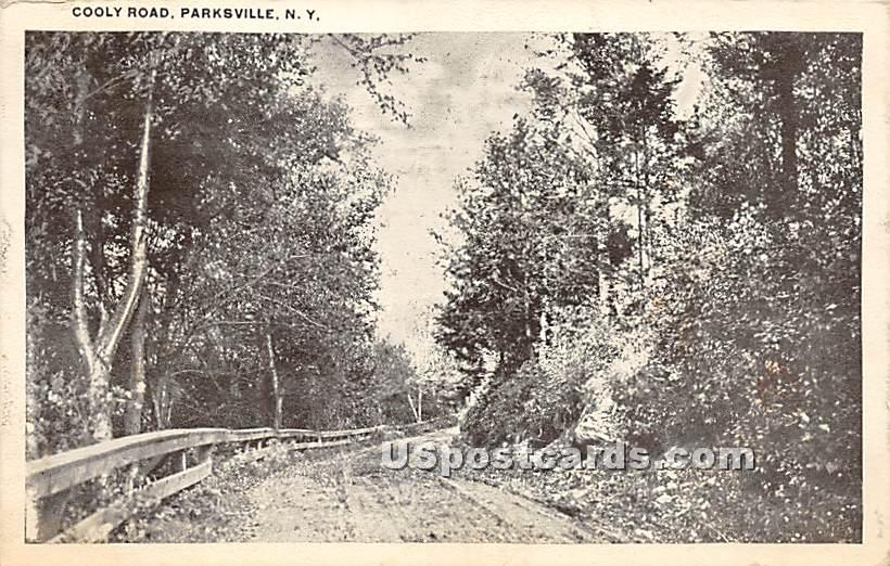 Cooly Road - Parksville, New York NY Postcard