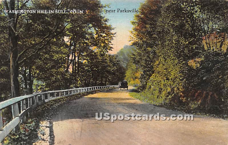Washington Hill - Parksville, New York NY Postcard