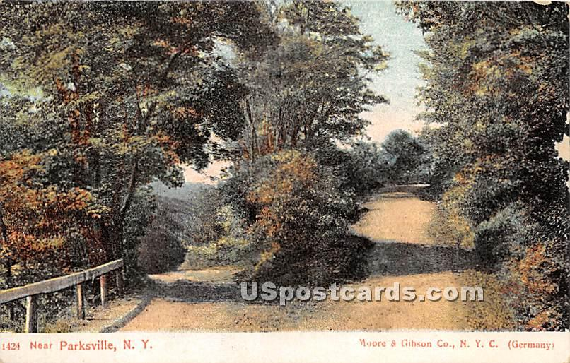 Parting of the Ways - Parksville, New York NY Postcard