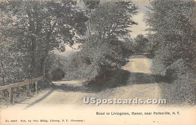 Road to Livingston, Manor - Parksville, New York NY Postcard