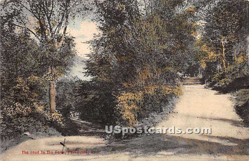 Road to the Falls - Parksville, New York NY Postcard