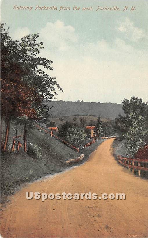 Entering Parksville from the West - New York NY Postcard
